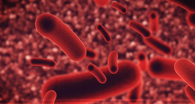 A Legionella não é a bactéria do Ar Condicionado!