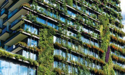 Sustentabilidade a dois Ritmos: A do Estado e organizações afins e a dos Privados
