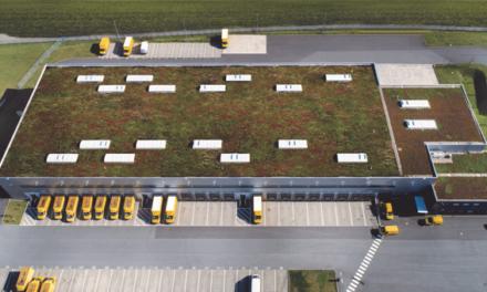 Greenroof, coberturas verdes com grande capacidade isolante