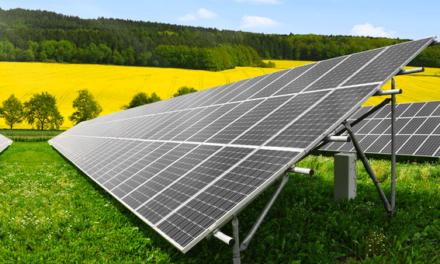 Sete municípios algarvios unem-se para uma rede regional de autoconsumo de energia solar