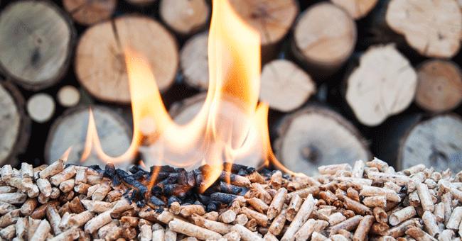 Campanha Switch4Air promove aquecimento com biomassa e abandono de combustíveis fósseis