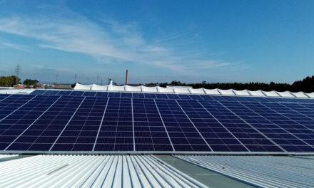 OLI investe meio milhão de euros para produzir energia limpa