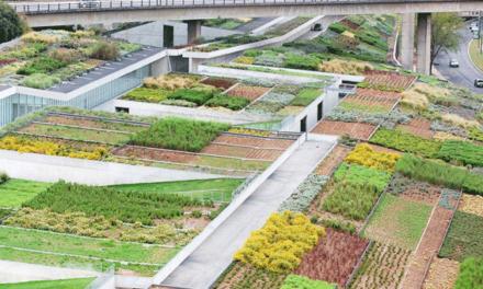 """""""A vegetação deve ser considerada um material de construção obrigatório"""""""